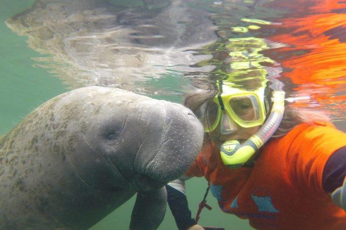 Women's Florida Springs and Manatee Kayak/Snorkel January 2022
