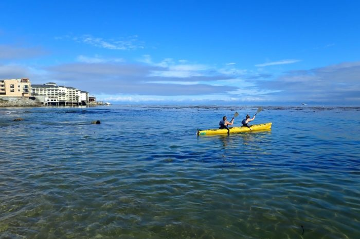 Historic Cannery Row By Kayak During Gray Whale Migration
