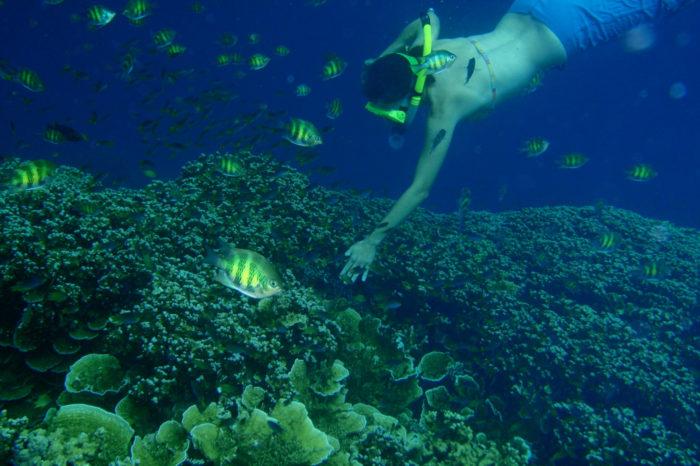 Sea Kayak and Snorkel The Rock Islands of Palau, Micronesia