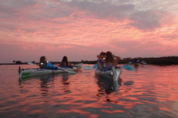Sunset, Baby Sea Otters & Low Tide Kayak~ Elkhorn Slough