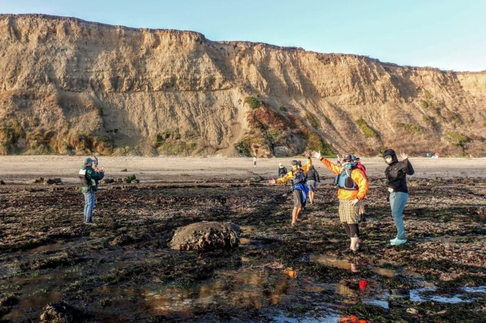 Moon Rise, Paddle, Picnic and Tide Pools: Pillar Point Harbor