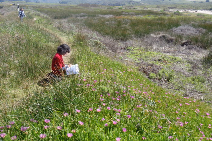 School Field Trip~Pescadero Marsh Hike & Nature Study