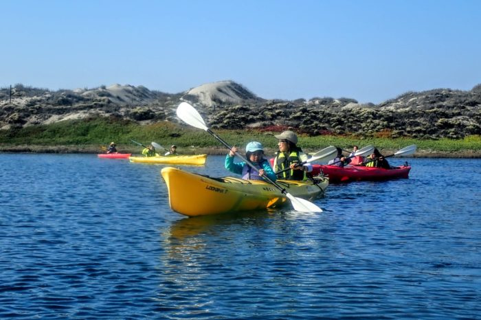 School Field Trip~Kayaking Elkhorn Slough ~Our Most Popular Tour!