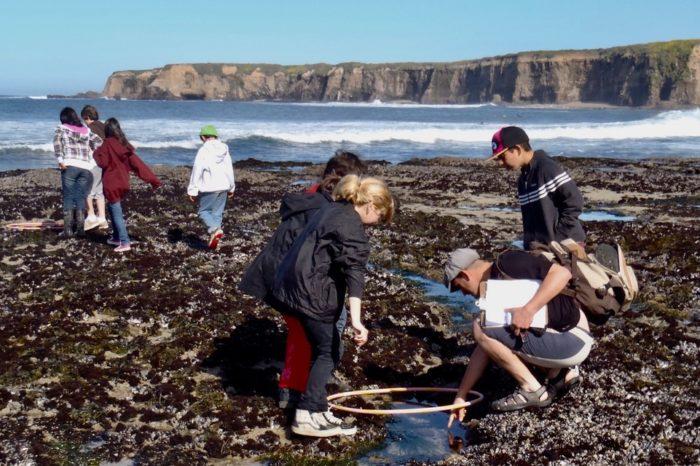 "School Field Trip~Tidepools of Coastal California or go ""Extreme Tidepooling"""