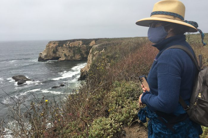 Women's Gray Whales and Tidepools of Davenport Landing