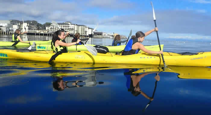 Historic Cannery Row By Kayak~Snorkel or Stroll